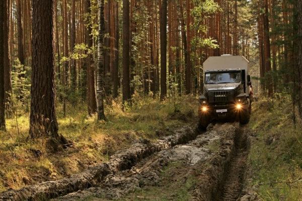 Отзывы владельцев об автомобилях «Урал Некст»