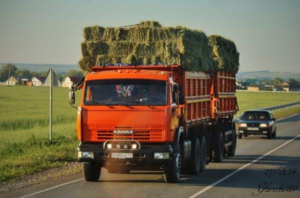 Цена КамАЗовских самосвалов-«сельхозников»