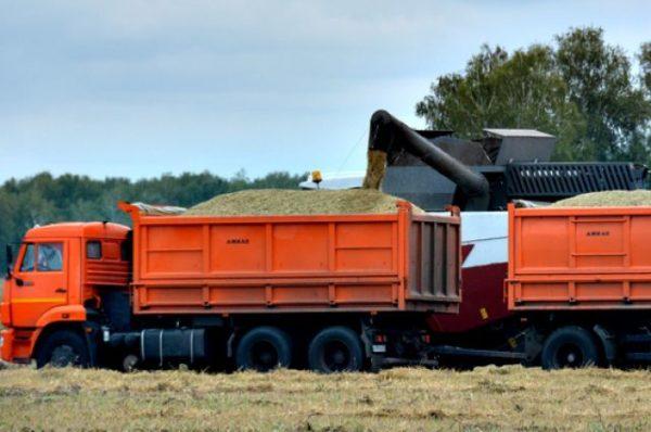 Модификации «КамАЗ-45143»